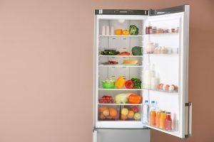 Best Garage Refrigerator